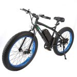 Ecobike Electric Fat Tire Bike Beach Snow Bicycle review