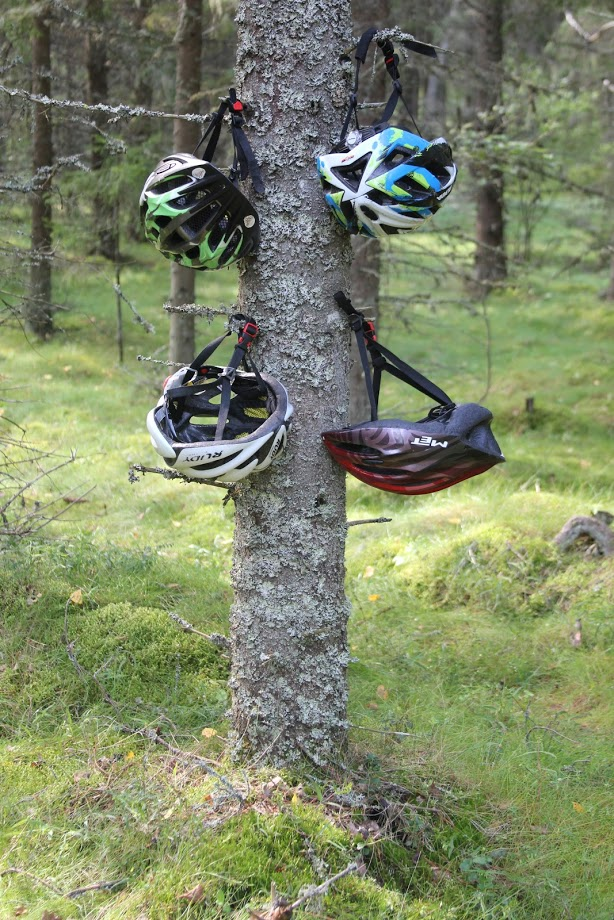 Helmets on Tree