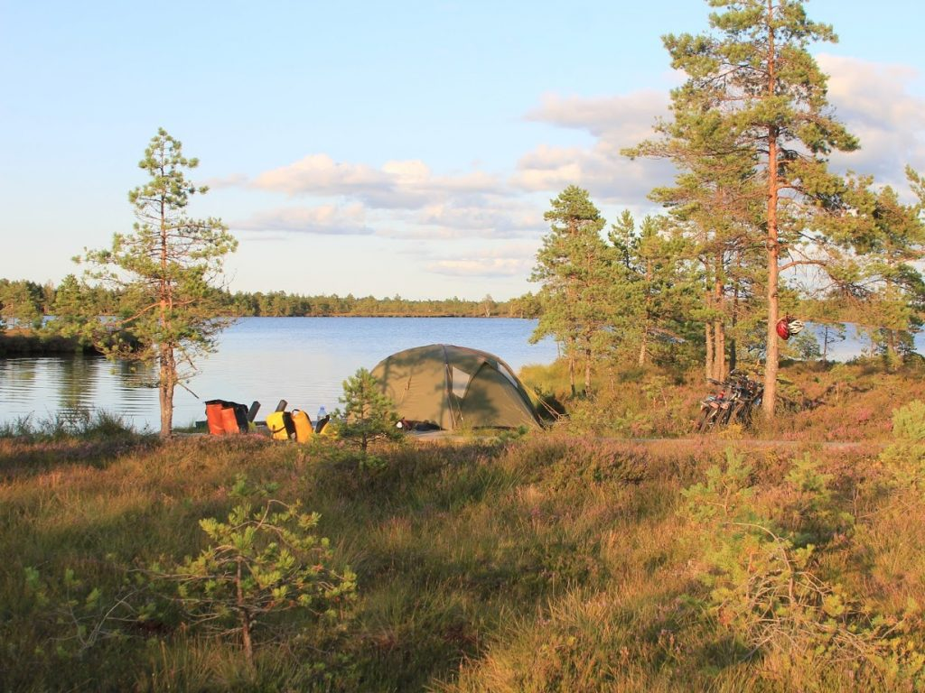 Tenting in Loosalu bog