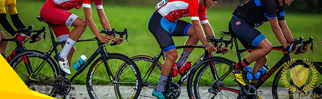 Bike Fit Article