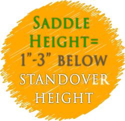 right balance bike saddle height