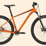 Review of Cannondale Trail 4 [2020]