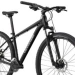 Review Of Cannondale Trail 8 (2021)