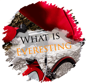 What is everesting