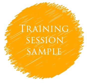 Training session sample