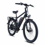 Rad Power Bikes RadCity Review