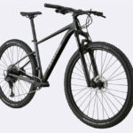 Cannondale Trail SL Series Review